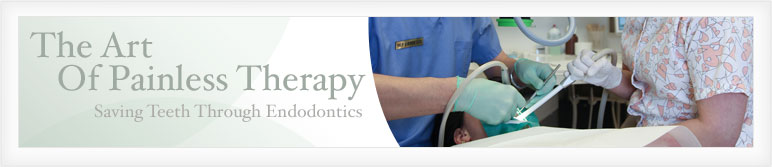The Art Of Painless Therapy - Saving Teeth Through Endodontics